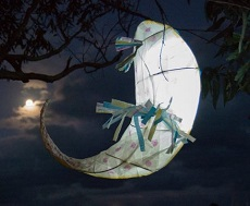 NORTH SYDNEY ART PRIZE: Creative Lantern Making Workshop
